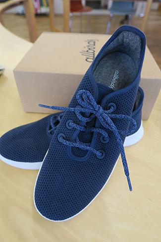 allbirds-shoe