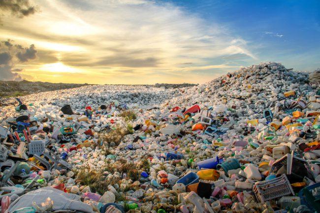 マイクロプラスチック問題の発生要因と深刻な影響